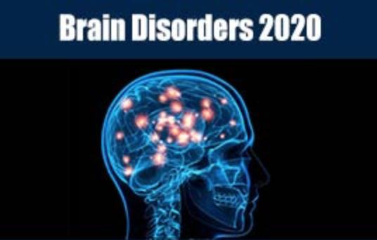 9th International Conference on Brain Disorders and Therapeutics, Webinar 1